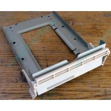 Заглушка для корзины SCSI дисков 55.59903.011 для серверов HP Compaq (Находка)