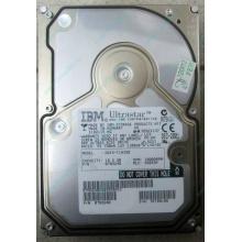 Жесткий диск 18.2Gb IBM Ultrastar DDYS-T18350 Ultra3 SCSI (Находка)